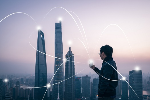 Job Search Network Technology